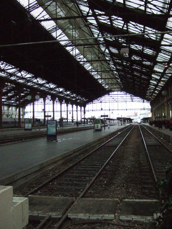 スイスジュネーブからパリへ新幹線フランス国鉄 (SNCF)の高速鉄道TGVparisパリスガレドリヨンガレドゥリヨン