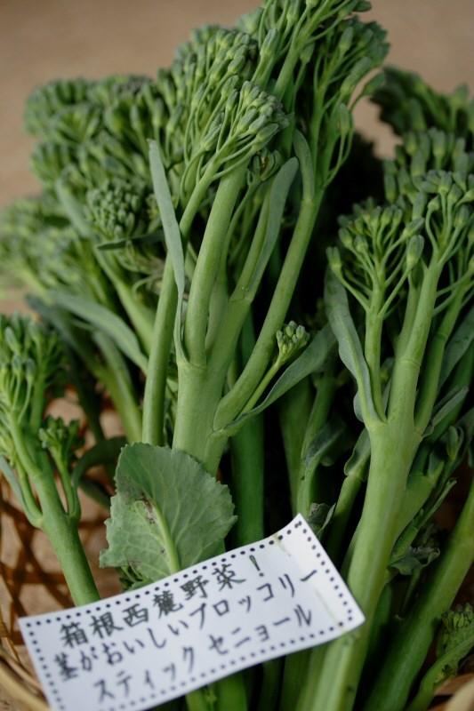 箱根西麓野菜ブロッコリースティックセニョール