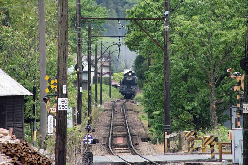 大井川鉄道で行く寸又峡温泉の旅蒸気機関車C11 312号