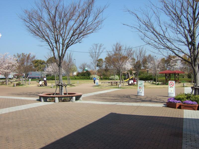 桜満開日帰りバスツアーで工場見学開花