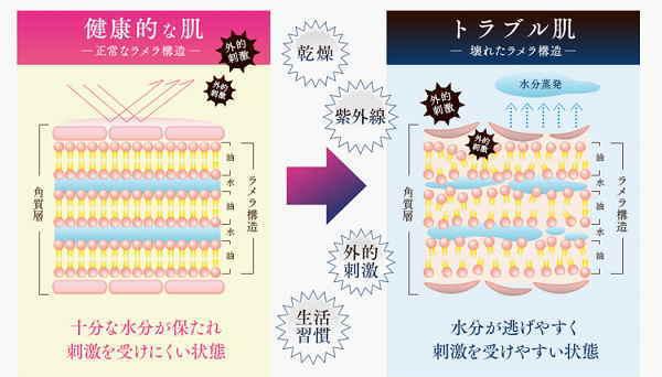 ラメラ構造の説明