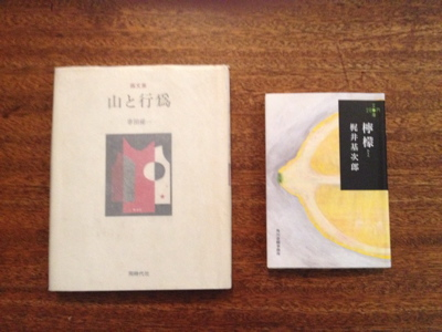 Moln-book2.jpg