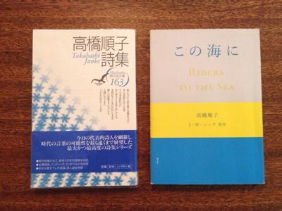 Moln-book6.jpg