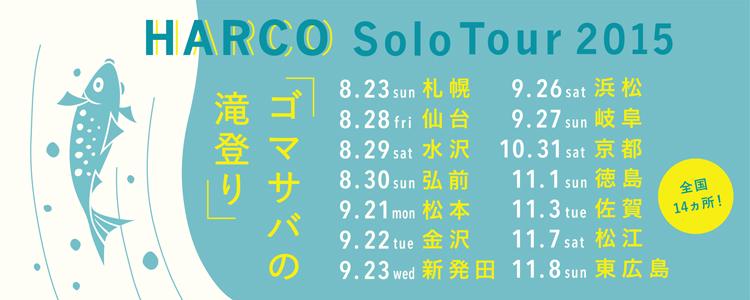 solotour2015_banner.jpg