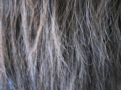 毛先の失敗 縮毛矯正