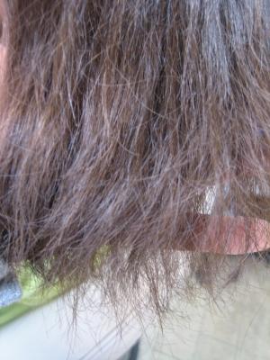 陰毛 ガシガシの髪 ダメージした髪