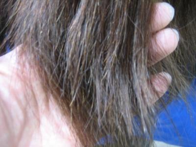 縮毛矯正 毛先 陰毛 チリチリ