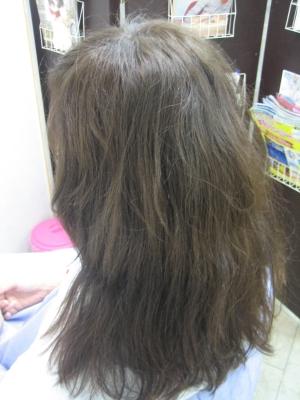 髪の老化 50代 美容院