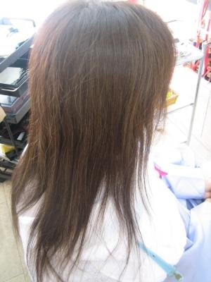 髪を減らすのみ ペラペラ