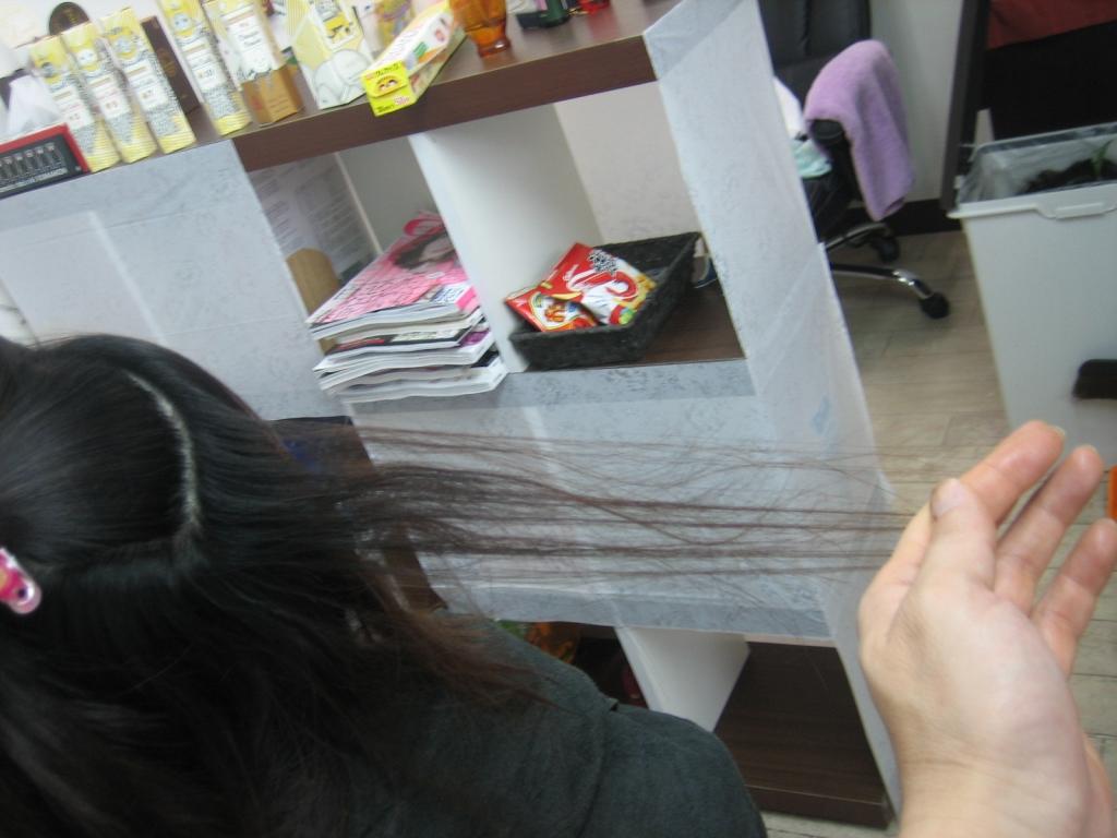 梳きすぎ 減らしすぎた髪
