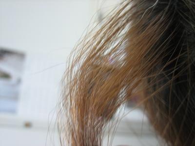 奈良 縮毛矯正 ホットペッパー 失敗