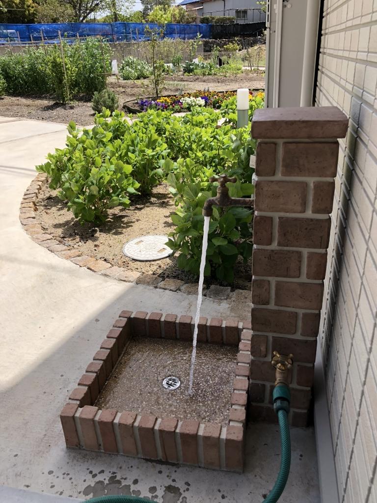 水質 検査 井戸水