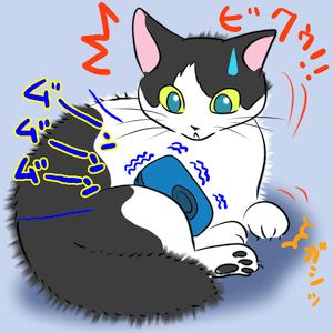 猫とケータイ2