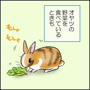 オヤツの野菜を食べてるときも