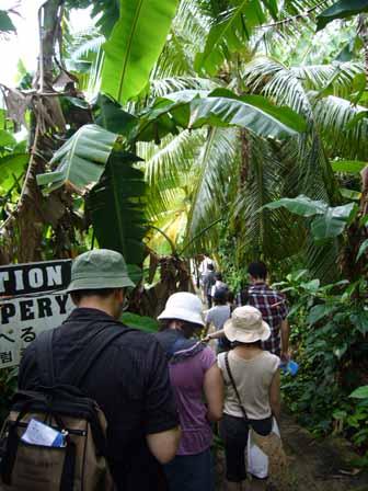 2007.05.15 グアム:ジャングルを歩く