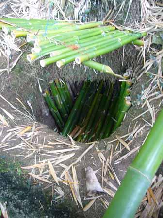 2007.05.15 グアム:横井ケーブ