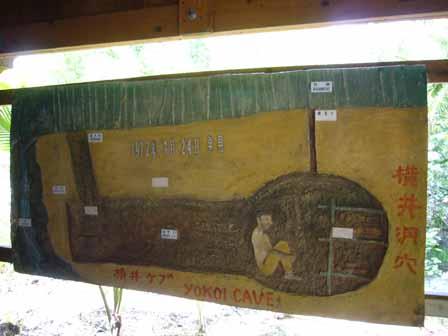 2007.05.15 グアム:横井ケーブ断面図
