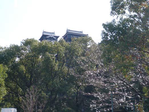 2008.03.26 熊本城と桜