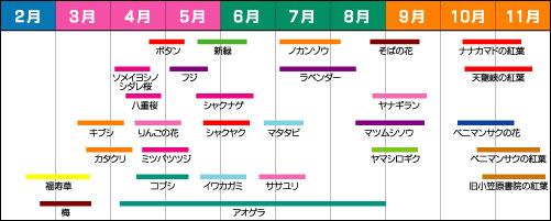 天竜峡の花暦