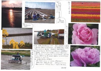 神田農園201305