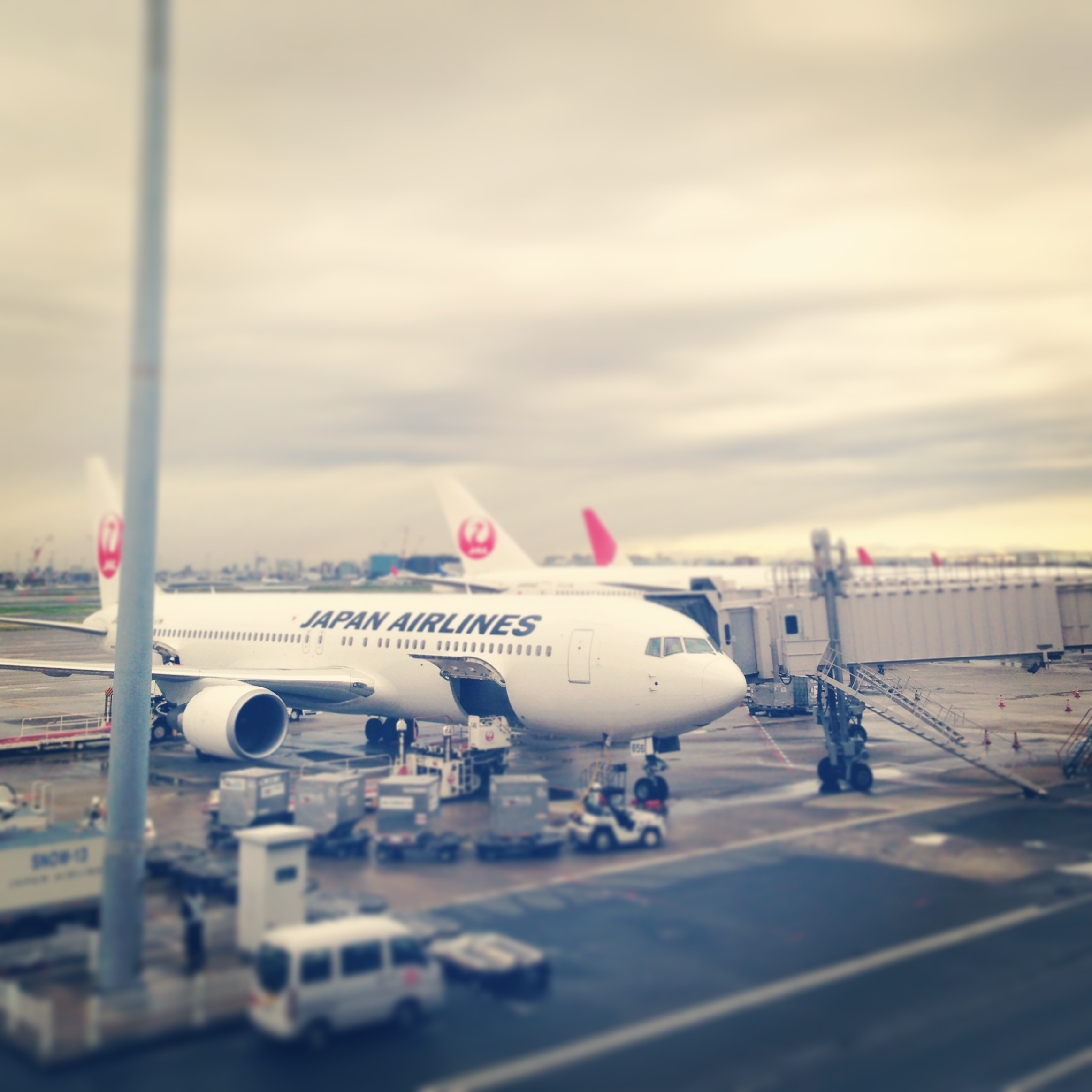 IMG_7477.JPG