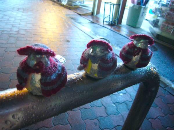 江ノ電江ノ島駅にて。ステンレスの雀が何か着せられている