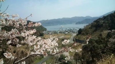 ☆桜&海☆