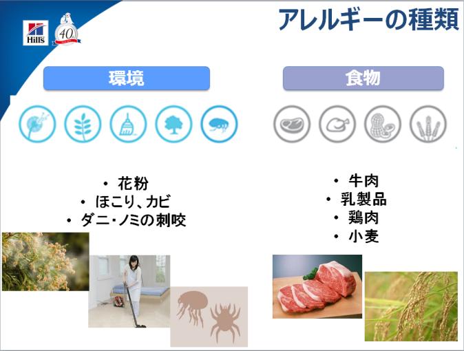 アレルギーの区別
