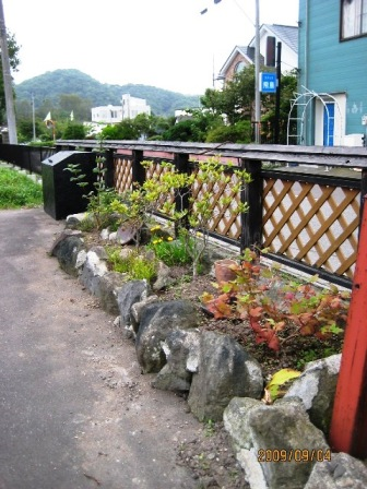 陶芸館秋の風景