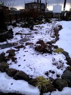 Pocket_Garden_2010-12月、雪景色