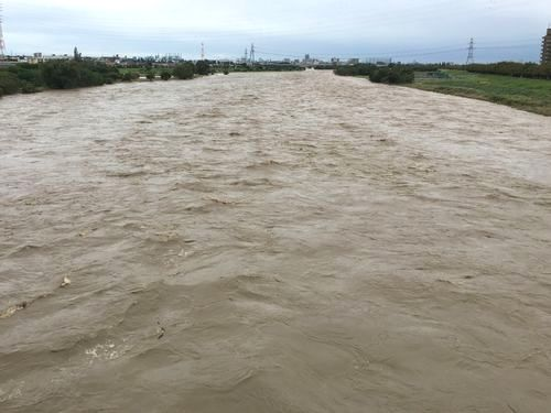 川の流れ下流