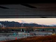 是政橋下より富士を望む