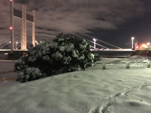 是政橋をバックに雪景色