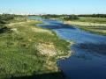 多摩川の流れは穏やかに