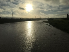 橋の下流 水量を増した多摩川