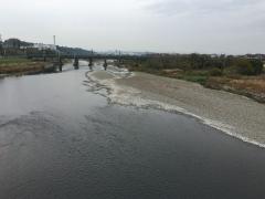多摩川に秋色がひろがる