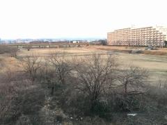 冬景色の河川敷