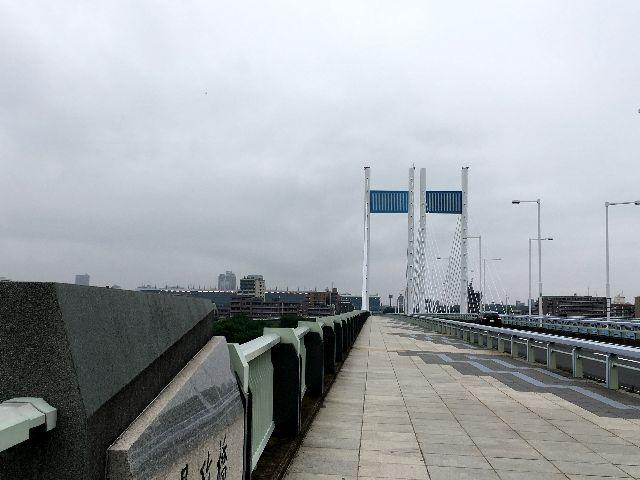 梅雨空一色の是政橋