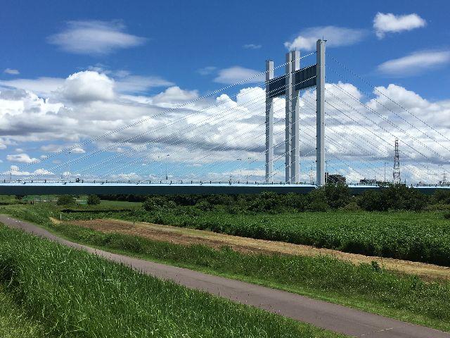 是政橋に夏の光が降り注ぐ