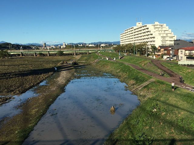 水が引いた河川敷 災害時復旧活動用河川敷道路