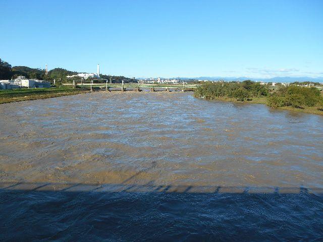 河川本流は川幅一杯に濁流が流れていく