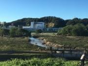 水路に架かる橋には流木が絡まっている