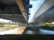 橋脚下は水溜まりに