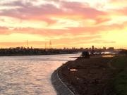 台風で荒れてしまった稲城側の河川敷