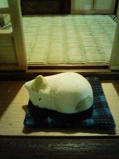 0910_民家_眠り猫