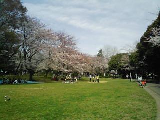 千葉公園_遠景