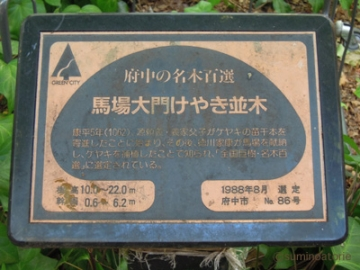 府中欅標識