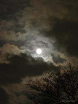 くもり満月