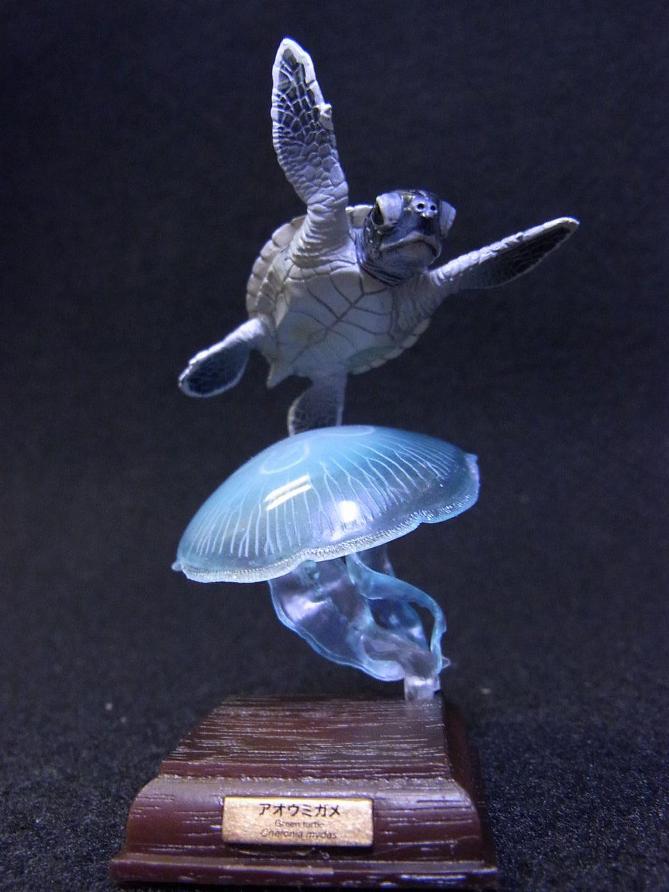 ネイチャーテクニカラー,アオウミガメ
