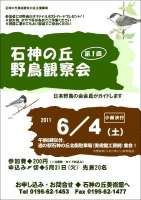 野鳥観察会(枠あり)